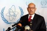 Muhammad El-Baradei. Zdroj: www.beeffco.com